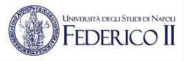 FedericoII-1024x343.jpg